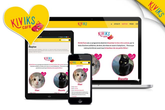Adoption Kiviks Care